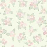 Textura abstrata da flor do redemoinho Imagens de Stock