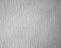 Textura agrietada de la pintura Imagenes de archivo