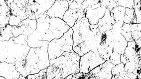 Textura agrietada del desierto de la tierra Tierra agrietada, fondo abstracto del vector de la textura del desierto Rasgu?os en l stock de ilustración