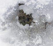 Textura agrietada del hielo y de la nieve Foto de archivo libre de regalías
