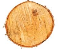 Textura aislada del árbol Foto de archivo