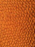 Textura alaranjada Imagens de Stock