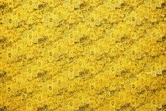 Textura amarela do laço imagem de stock royalty free