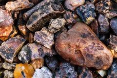 Textura ambarina natural Fundo colorido para o anúncio e as bandeiras Resina fossilizada vintage como um fundo Vermelho Foto de Stock