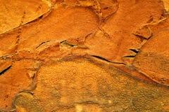 Textura anaranjada de la espuma Foto de archivo