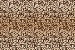 Textura animal do leopardo do fundo Vetor ilustração royalty free