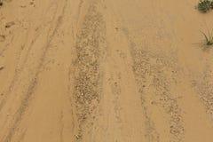 Textura-areia Imagens de Stock Royalty Free