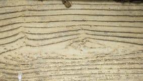 Textura arrugada extracto, fondo envejecido Elemen del diseño del Grunge fotos de archivo
