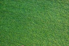 Textura artificial de la hierba verde para construir la decoración interior y al aire libre Cierre para arriba foto de archivo libre de regalías