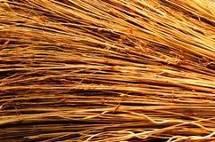 Textura asoleada de la zahína. Foto de archivo
