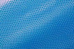 Textura azul da pele fotografia de stock royalty free