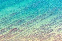 Textura azul del mar con alga marina imágenes de archivo libres de regalías