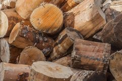 Textura, background - naturale wood. Cut firewood stock photo