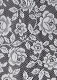 Textura blanca de las rosas del cordón Foto de archivo
