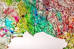 A textura bonita do vidro colorido quebrado em partes pequenas imagem de stock royalty free