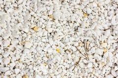 Textura branca da pedra do seixo na terra Foto de Stock
