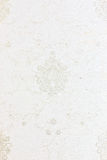 Textura branca do backgound do papel de parede floral Fotografia de Stock