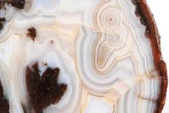 Textura branca e marrom da ágata Fotos de Stock