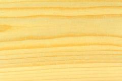 Textura brilhante da madeira de pinho imagem de stock