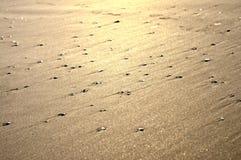 Textura brillante de la arena Fotografía de archivo libre de regalías