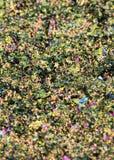 Textura brillante multicolora, lentejuelas con el fondo de la falta de definición Imagenes de archivo