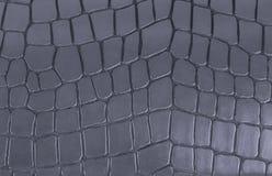 Textura cinzenta de couro Imagens de Stock Royalty Free