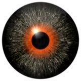 Textura cinzenta do globo ocular 3d com círculo alaranjado ilustração stock