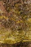 Textura colorida de la roca Foto de archivo libre de regalías
