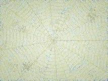 Textura colorida del fondo Foto de archivo