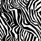 Textura colorida inconsútil de la piel animal de la cebra Imagenes de archivo
