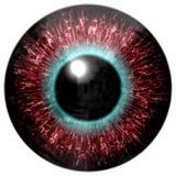 Textura colorida realista del iris del ojo Foto de archivo
