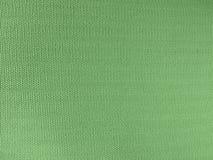 Textura com espinhas fotografia de stock royalty free