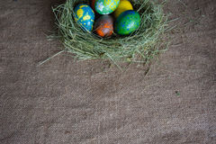 Textura com o ninho dos ovos da páscoa Imagem de Stock