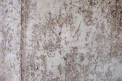 Textura com a pintura velha, usada, astuto, monocromático cinzento da pintura descascada fora Resultados da cor do Grunge em um t fotos de stock royalty free