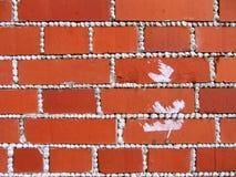 Textura com tijolos vermelhos imagens de stock