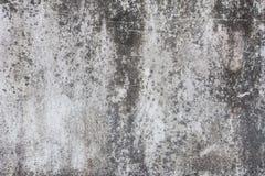 Textura concreta Fotografia de Stock Royalty Free