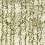 Textura concreta cinzenta Fotos de Stock