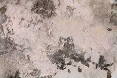Textura concreta gris del fondo Yeso veneciano, cierre para arriba fotografía de archivo