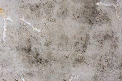 Textura - concreto sujo com gotejamentos foto de stock