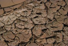 Textura convexa murcho da lama Foto de Stock