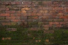 Textura cubierta de musgo apilada del ladrillo Foto de archivo
