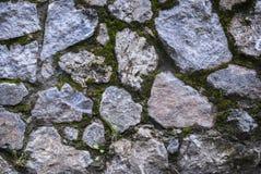 Textura cubierta de musgo de la roca Fotografía de archivo