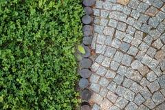 Textura curto do pavimento do gramado e da pedra da grama Fotografia de Stock Royalty Free