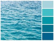 Textura da água do oceano com amostras de folha da cor da paleta foto de stock