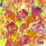Textura da aquarela da queda das folhas de outono Fotos de Stock Royalty Free