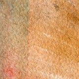 Textura da aquarela de uma cor marrom transparente Ilustração Fundo abstrato da aquarela, pontos, borrão, suficiência, cópia, nab Fotografia de Stock Royalty Free