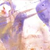 Textura da aquarela do roxo transparente, lilás, rosa, ocre, cinzento Ilustração Fundo abstrato da aquarela, pontos, borrão, fil Foto de Stock Royalty Free