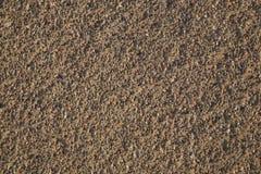 Textura da areia Fotos de Stock Royalty Free