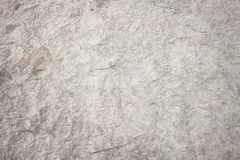 Textura da areia da praia com folhas do pinho Imagens de Stock