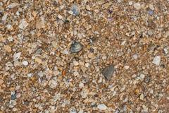 Textura da areia do mar feita de partes do shell e da pedra Imagens de Stock Royalty Free